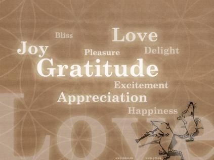 Gratitude #LoveLand101
