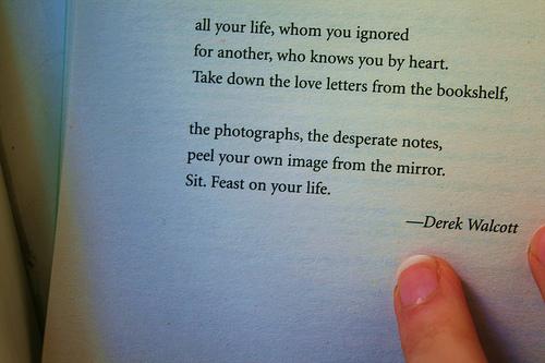 Derek Walcott Feast on your liife