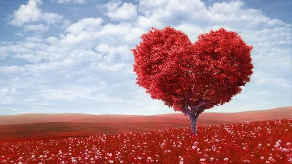472254_valentines-day_love_romance_heart_tree_green_5000x2812_www.GdeFon.ru_