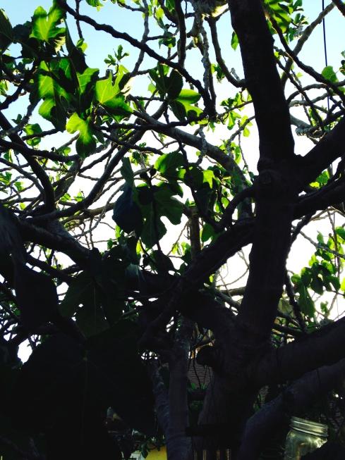 Melanie Lutz's Love Land tree